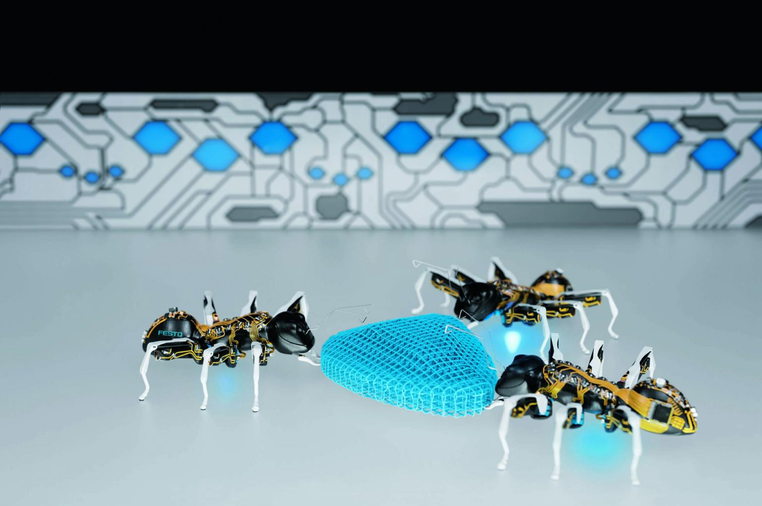 The BionicAnts demonstrate how self-organising individual components can communicate with each other and solve complex tasks as a networked overall system