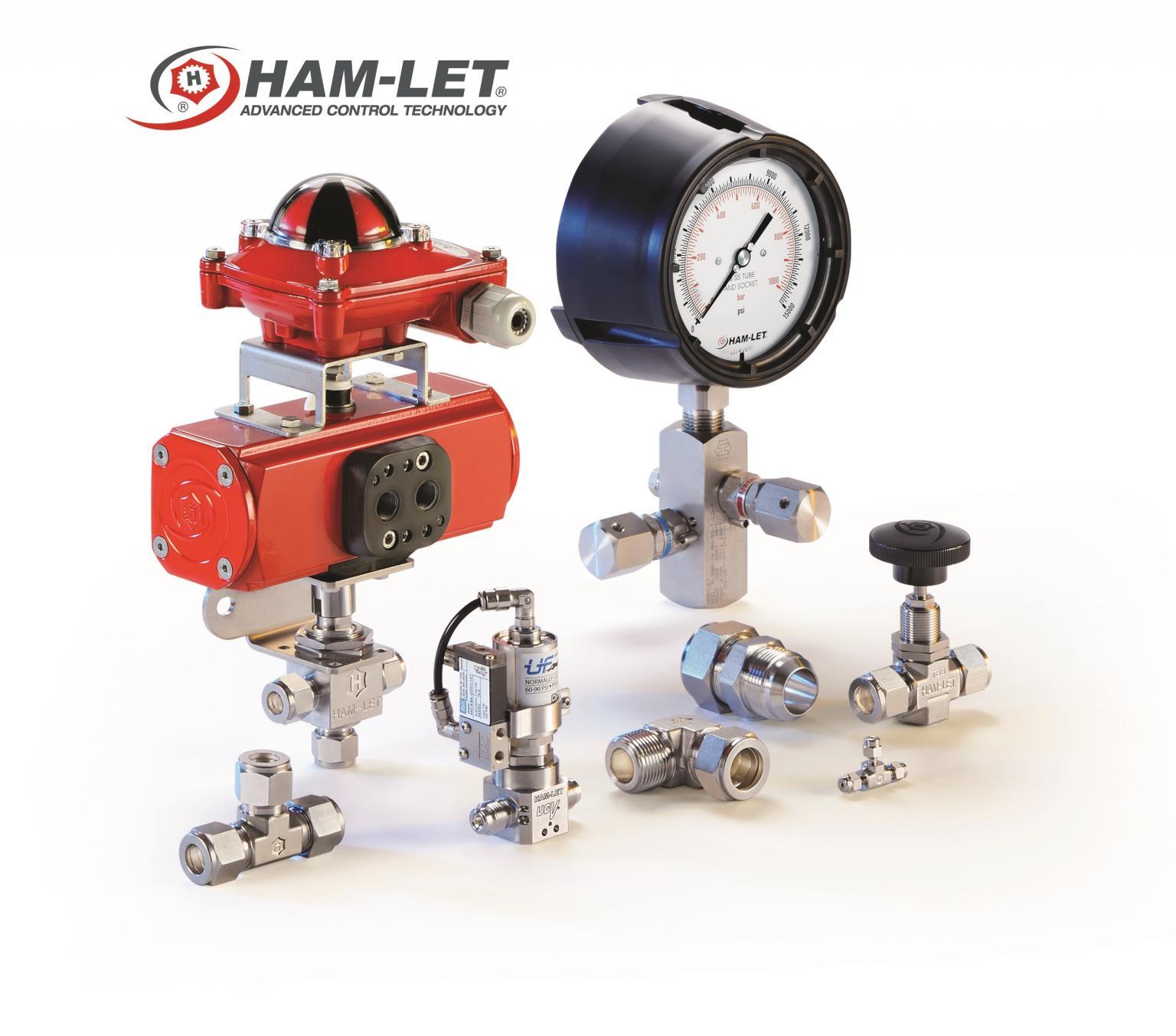 HAM-LET H-99 Severe Service Needle Valves