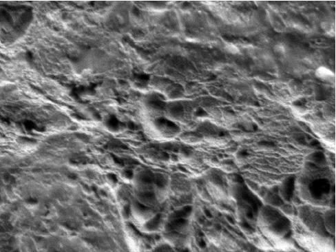 Plasma treated PTFE surface