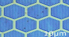A Graphene membrane suspended over an array of cavities
