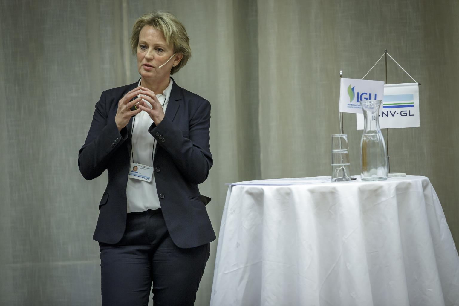 """When planning for the next 30 years, gas should play an important role."" - Elisabeth Tørstad, CEO, DNV GL - Oil & Gas"