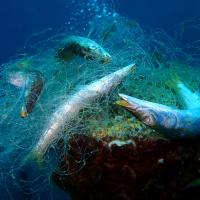 How can fishing nets be recycled?